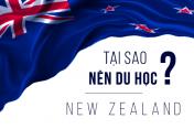 Học MBA tại 7 trường đại học danh tiếng của New Zealand